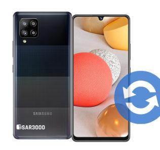 Samsung Galaxy A42 5G Software Update